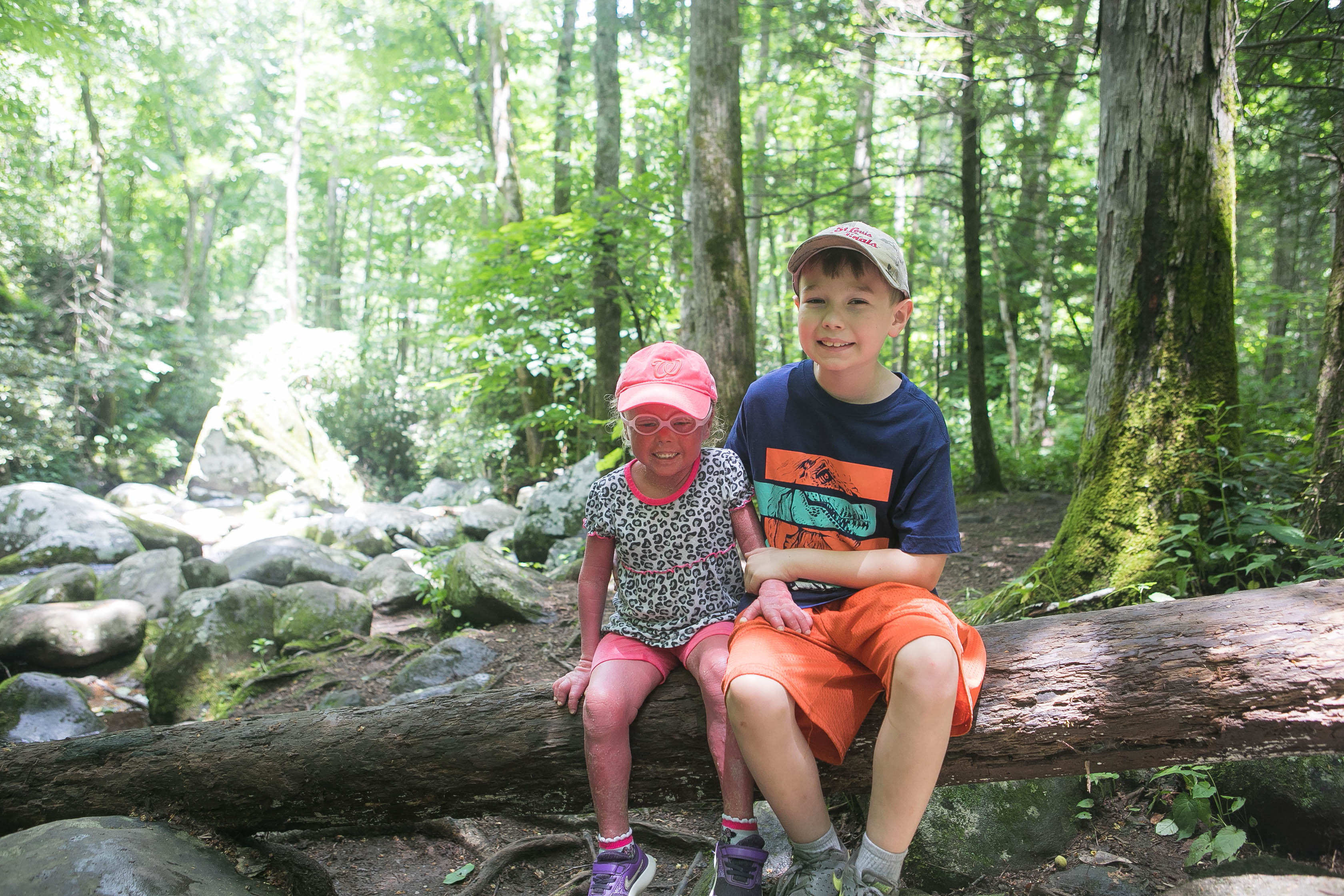 Things to do with kids in the Smoky Mountains